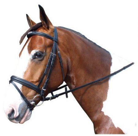 Avulon Hoofdstel Strass Zwart Pony nodig? - ruitershopbeerens.nl