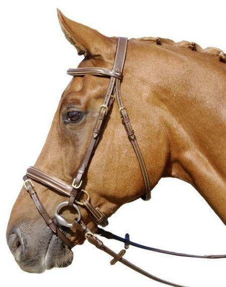 HKM Hoofdstel First Zwart Pony nodig? - ruitershopbeerens.nl
