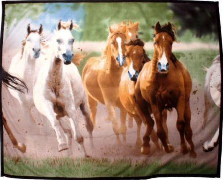 Fleeceplaid met groep paarden Motief 120x165 cm nodig? - ruitershopbeerens.nl
