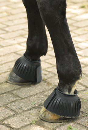 Premiere Springschoen rubber Zwart M nodig? - ruitershopbeerens.nl