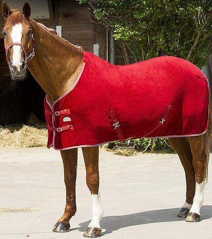 Polar Fleece deken Rood 195 nodig? - ruitershopbeerens.nl