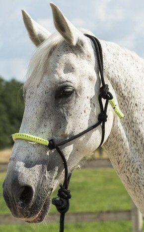 Ekkia Touwhalster met touw Zwart Pony nodig? - ruitershopbeerens.nl