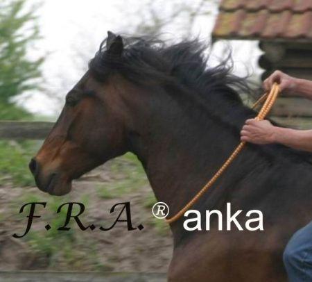 F.R.A. Anka Rijring Bont Dikte 12mm nodig? - ruitershopbeerens.nl