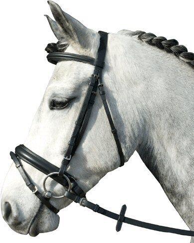 Imperial Riding Hoofdstel. Zwart Pony nodig? - ruitershopbeerens.nl