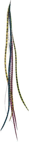 Ibiza feather hair extensions / Haarveertjes - Setje van 4 Multi ca. 27 cm nodig? - ruitershopbeerens.nl